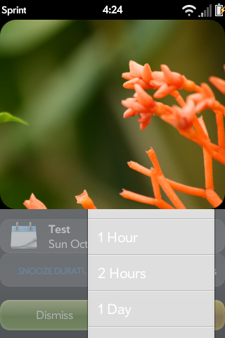 Snooze Duration Selection Screenshot 1