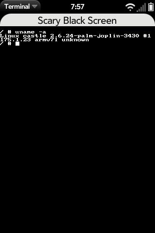 Terminal Screenshot 0